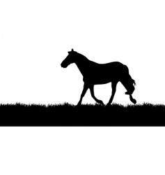 horse meadow vector image