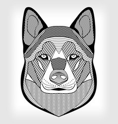 Malamute hound head black and white drawing on vector
