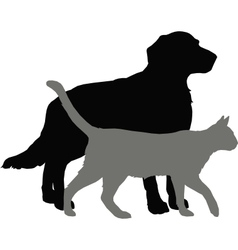 Pet vector