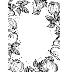 fruits engraving vector image vector image