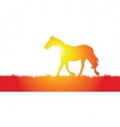 Horse meadow vector