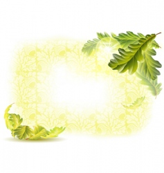 Oak leaves background vector