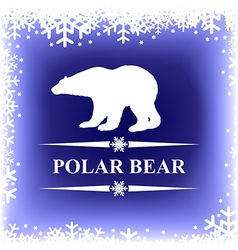 Polar bear blur vector