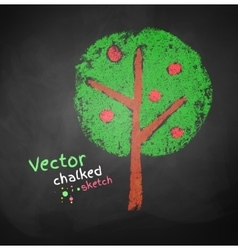 Chalked drawing of apple tree vector