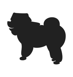 Chow Black Silhouette vector image