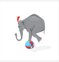circus elephant standing on the ball vector image vector image