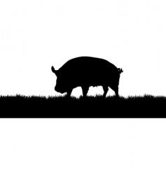 pig meadow vector image vector image