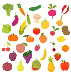 Big collection of vegetables and fruits Healthy vector image vector image