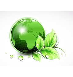 Natural green world with leaves and water drops vector