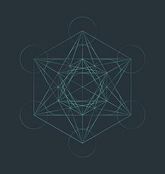 monocrome outline sacred metatron cube vector image