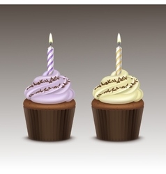 Set birthday cupcake with cream sprinkles candle vector