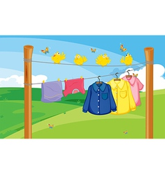A flock of birds near the hanging clothes vector