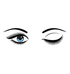 beautiful women blue eyes with make up vector image
