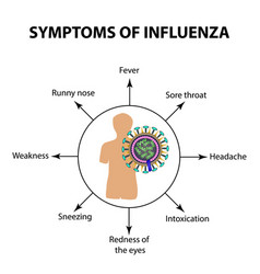 symptoms infections of the influenza virus vector image vector image
