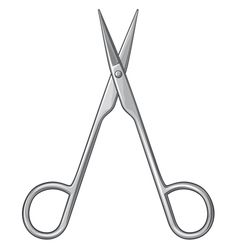 small scissors vector image