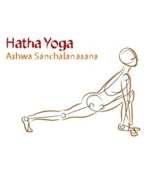 Hatha yoga ashwa sanchalanasana vector