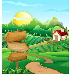 Scene with vegetable field and farmyard vector