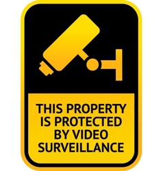 Video surveillance sticker vector image vector image