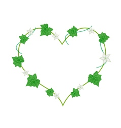 White flowers and leaves in heart shape vector