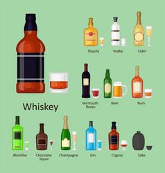 Alcohol drinks beverages cocktail bottle lager vector