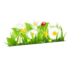 Bunch Of Flowers With Grass And Ladybug vector image