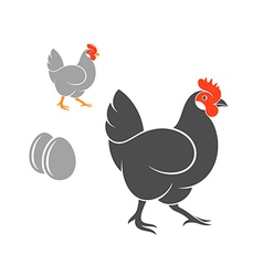 Two hens with eggs vector image vector image