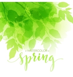Watercolor background with green leaves vector