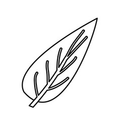 Sketch contour of big aovada leaf plant vector
