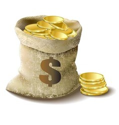 bag with gold dollar vector image