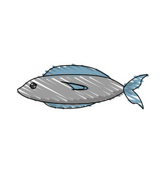Drawing fish fresh food picnic shadow vector