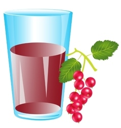 Juice from berry wood sorrel vector image vector image