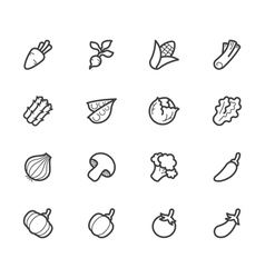 vegetable icon set on white background vector image vector image