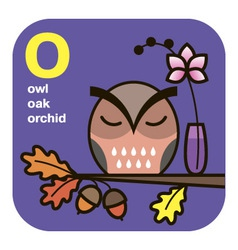 Abc owl oak orchid vector