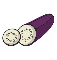 eggplant vegetable food fresh vector image