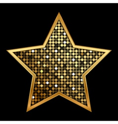 gold shiny star vector image vector image