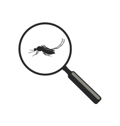 Mosquito with magnifier vector image vector image