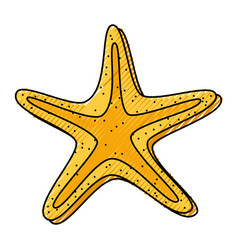 scribble starfish cartoon vector image