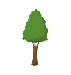 Green tree plant foliage branch image vector