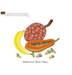 Papaya banana and pandanas fruits famous fruit vector