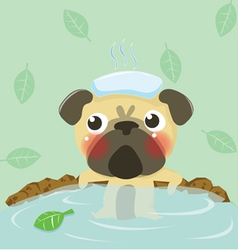 Pug relax in warm water vector