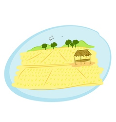 Thai rice field vector