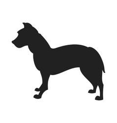 Pitbull black silhouette vector