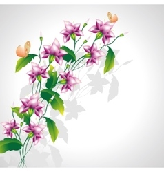 Mauve flowers and butterflies vector
