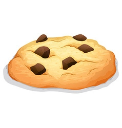 Chocolate chip cookie on white vector