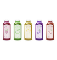 fruit and berry juice bottles vector image