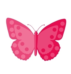 Pink Butterfly flat design Isolated on white vector image vector image