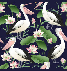 Seamless pattern with graceful pelicans vector