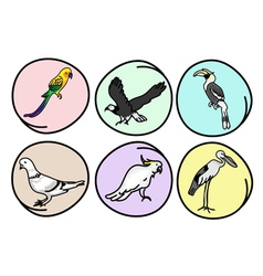 Set of beautiful wild birds vector
