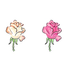 Rose colorful sketches vector image