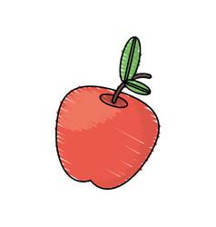 drawing apple fruit food vector image